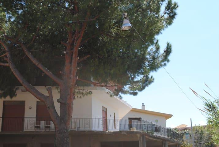 Pine Tree Team (Only Group) - Barcellona Pozzo di Gotto - Daire