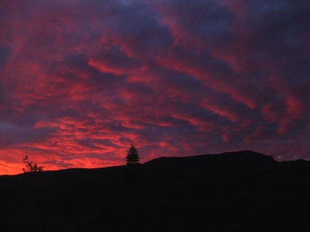 Sky Fall Farm - Lillian Rock