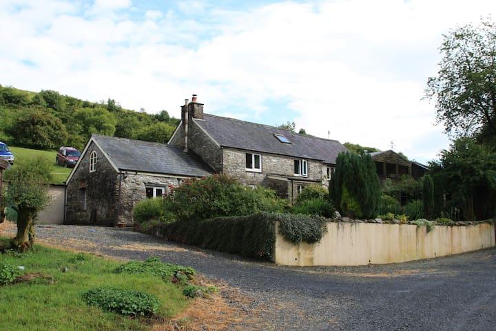 LLethr, a remote rural retreat. - Cellan - Appartement