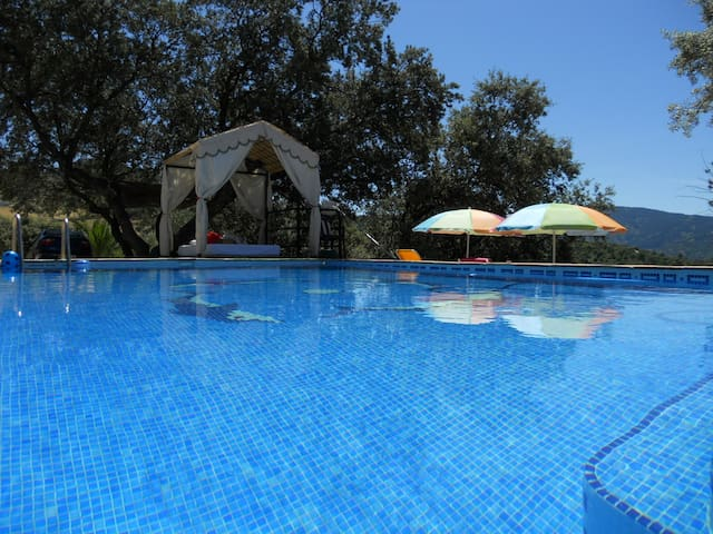Charming and cosy cottage with pool (2-5 Guests). - Alpandeire - Naturstuga