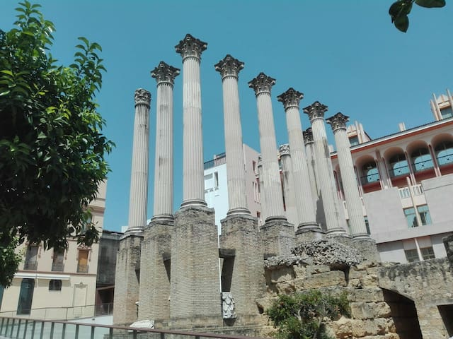 *Piso céntrico en el casco antiguo, parking gratis - Córdoba - Lägenhet