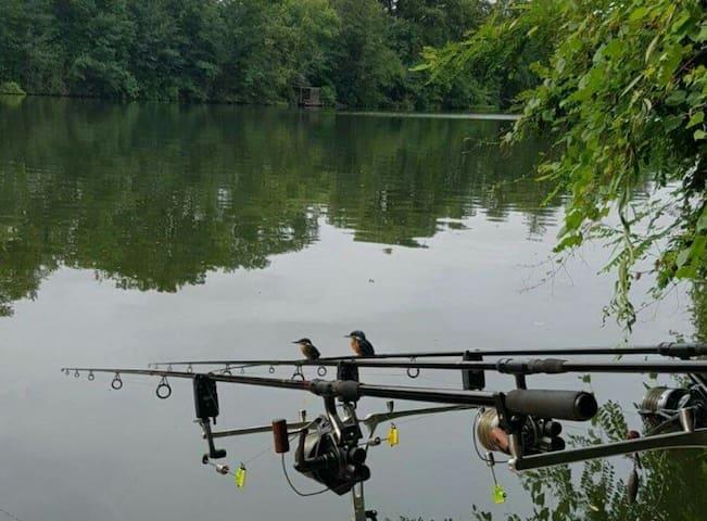 La pêche au bord du Lot, le paradis - Trentels