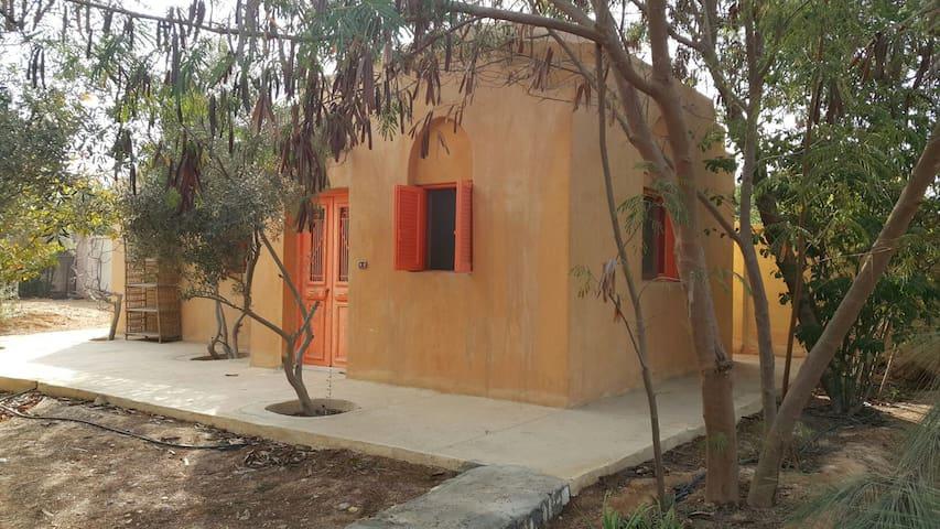Cute Nubian Cottage - cairo - Hus
