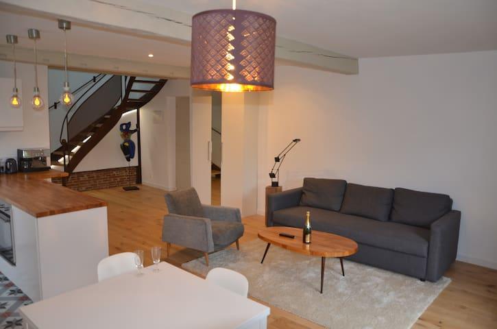 Loft avec mezzanine 15 km Toulouse Est - Vallesvilles