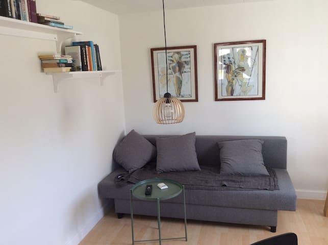 Hyggelig lejlighed i roligt område - Roskilde - Appartement