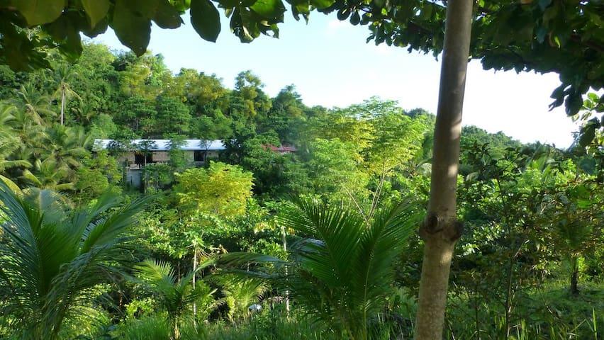 Green Mountain  Oasis 2 Bedroom House  - Serenity - Catmon - Huis