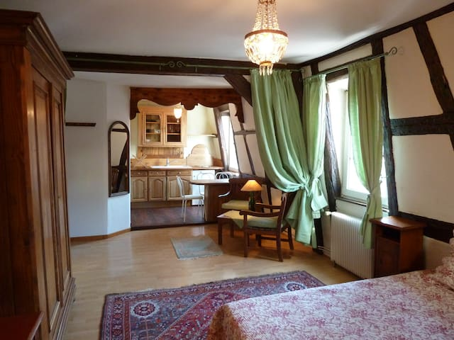 Studio standing in the historical heart of Colmar - Colmar - Daire