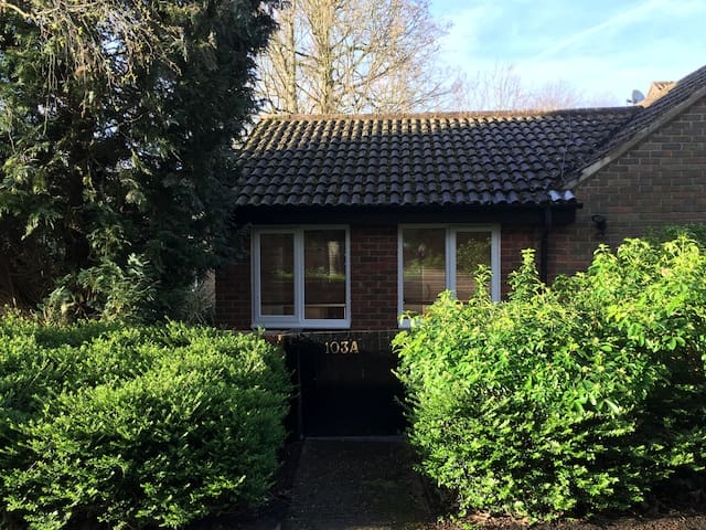 The Copse, Ascot - NEW to market - Windsor and Maidenhead - Leilighet