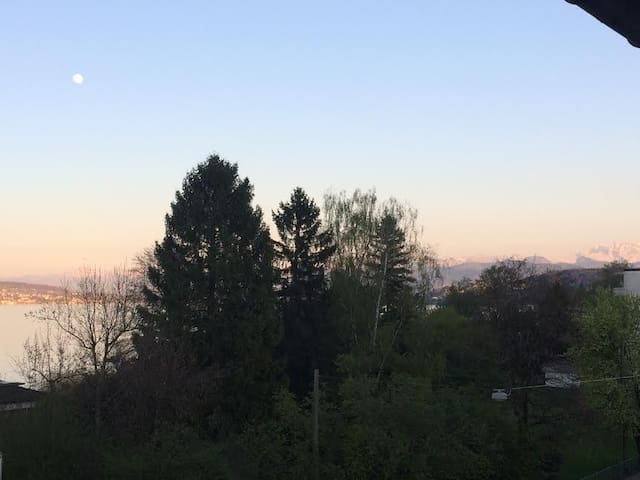 Lake View Sofa Bed - Horgen - Lägenhet