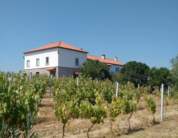 Quinta de Vodra - Seia - Gjestehus