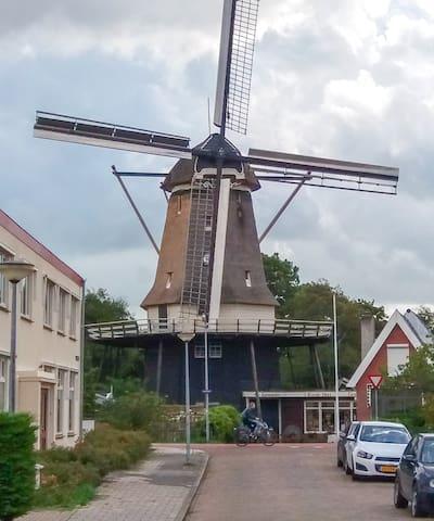 Alkmaar - Room near the 't Roode Hert windmill - Alkmaar
