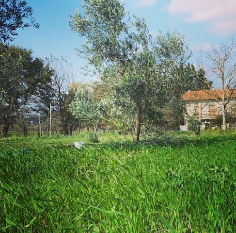 Casa di campagna del primo '900 - c.da Mosti - Hus