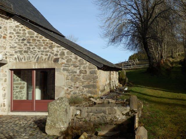 Le Baccaret - Chanterelle - Huis