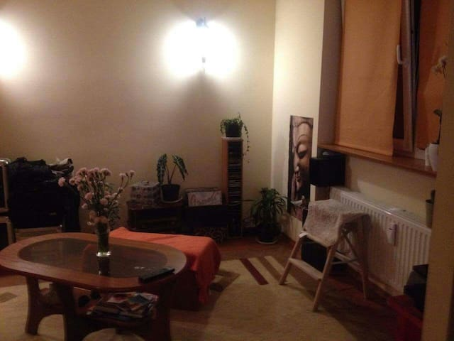 Cozy apartment near center-whole flat. Or room 10$ - Bielsko-Biała - Appartement