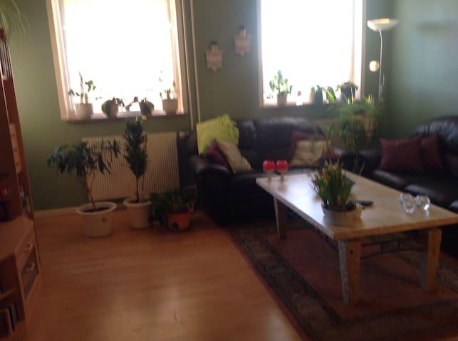 3 værlset lejlighed - Køge - Appartement
