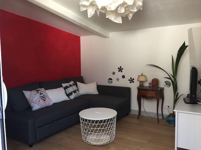 studio   20 m2 +terrasse   Calme - Ahetze
