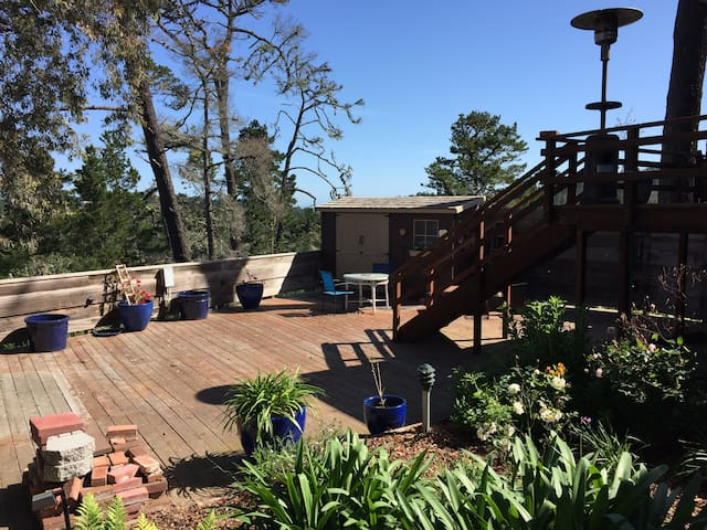 Private, romantic, quiet 1-br apt. in Carmel Woods - Carmel-by-the-Sea - Appartement