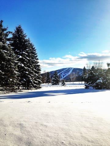 Amazing view of Elk Mountain - Union Dale - Ev