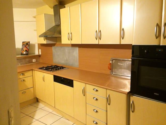 Grand appartement chaleureux - Castelginest - Wohnung
