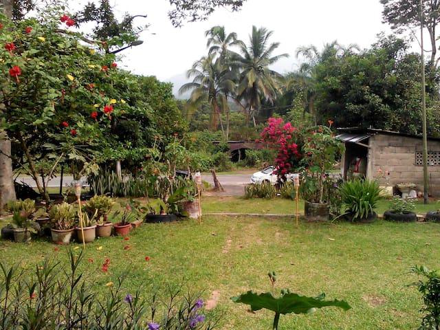 Homestay Ruby Kampung Kata, Batu Kikir - Batu Kikir