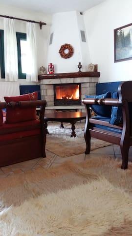 Άνετο, ζεστό σπίτι στον Πολύδροσο Παρνασσού. - Polidrosos - Casa