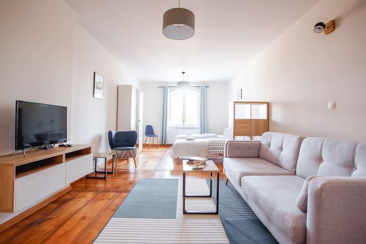 Apartamenty Krakowskie 36 - Single Two - Lublin - Daire