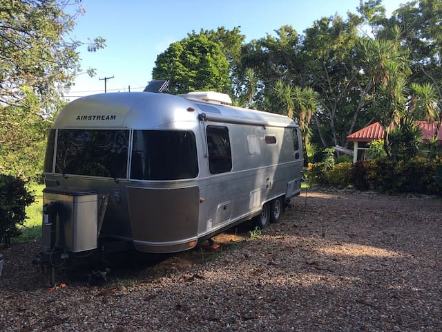 Airstream in the jungle - San Antonio - Autocaravana