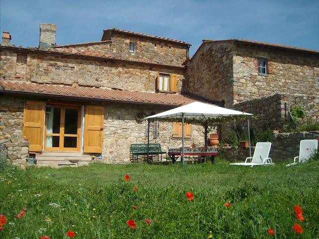 Tuscan Chianti Holiday Fonte with private lake. - Radda In Chianti - Apartmen