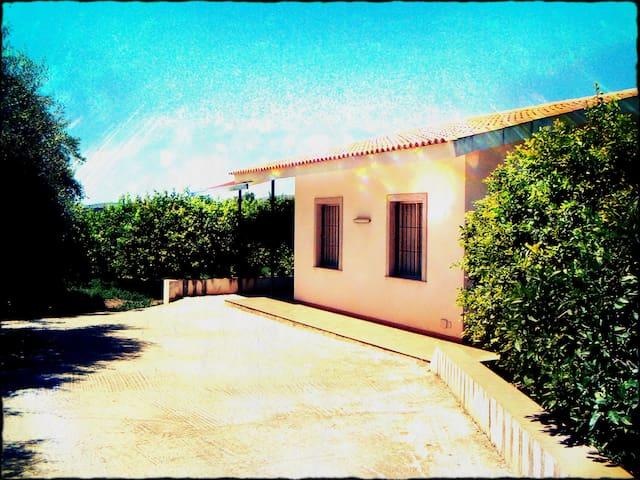Lemon villa - avola
