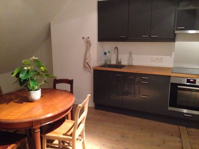 spacious and family friendly apartment in Antwerp - Anvers - Appartement en résidence