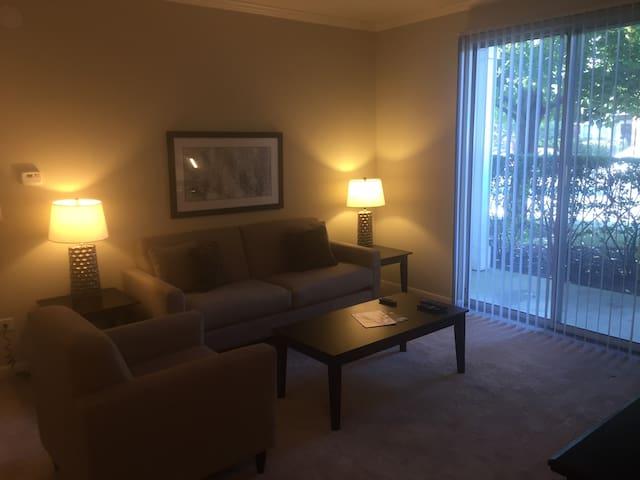 Fantastic 1BR/1BA in Naperville - Naperville - Apartamento