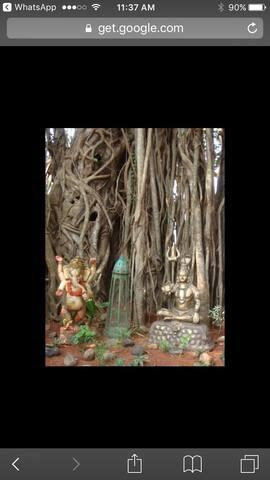 The Banyan Tree House@Keri - Panjim - Hus