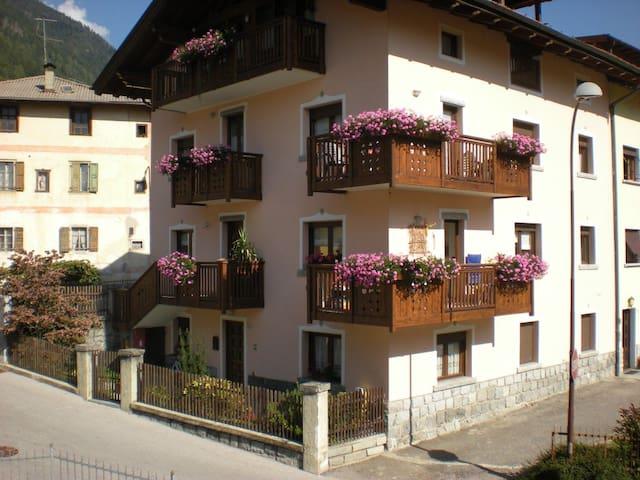Sunny appartment near Pinzolo - Pelugo - Huoneisto