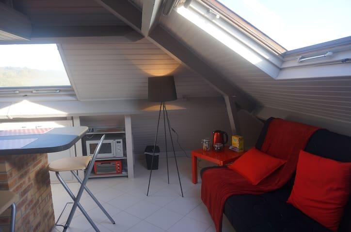Aangename studio in de buurt van Enghien en Parijs - Soisy-sous-Montmorency - Appartement