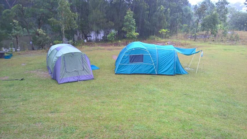 Camping on the Sunshine Coast - Yandina - Tente