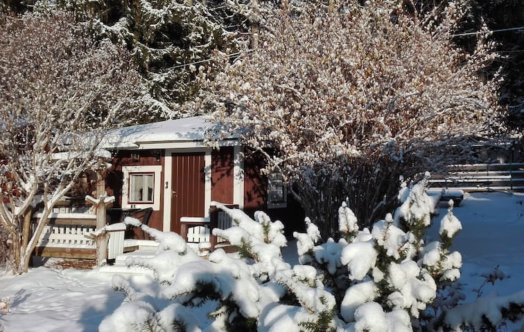 Lovely 1-room cottage close to nature - Asikkala
