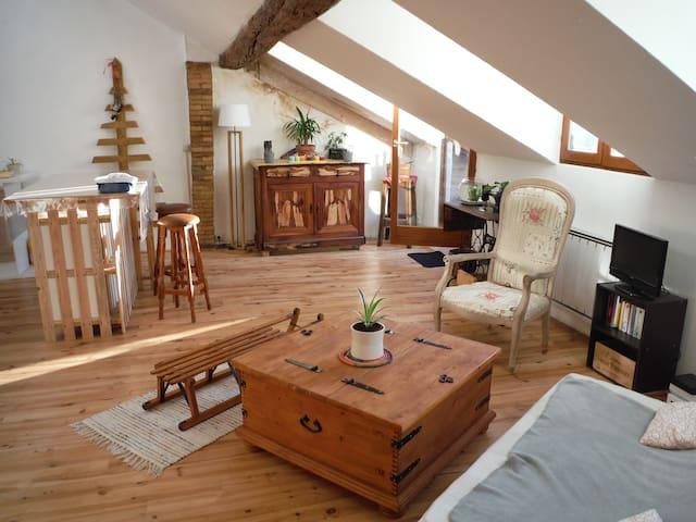 Chambre privée dans appart de charme ! - Gap - Lägenhet