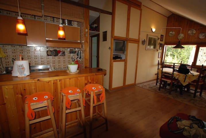 Delizioso appartamento sul monte Terminillo! - Lisciano - Wohnung