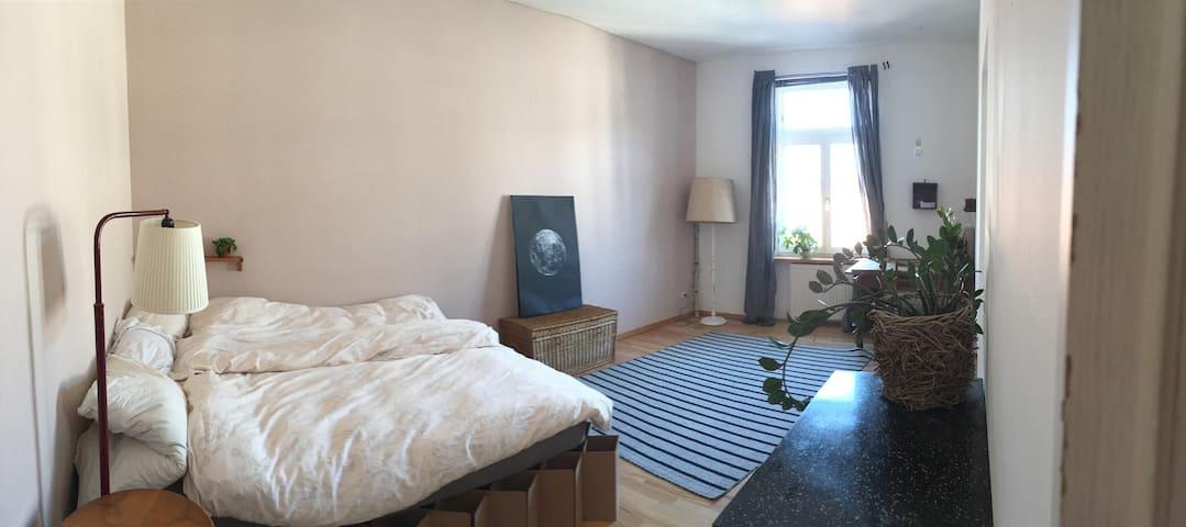 quiet, clean and friendly - Frankfurt am Main - Apartamento