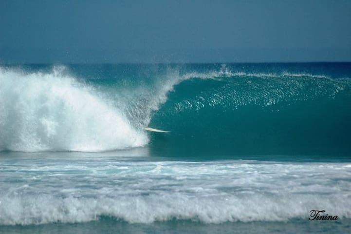 Surfers Villa