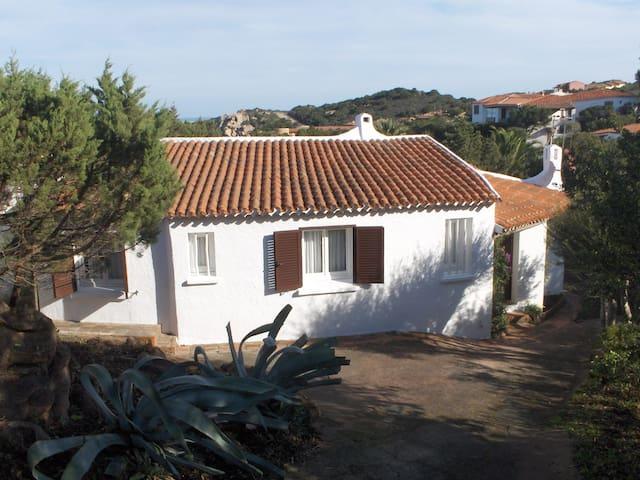Villa with terrace, wonderful sea views, 6 guests - Baja Sardinia - Villa