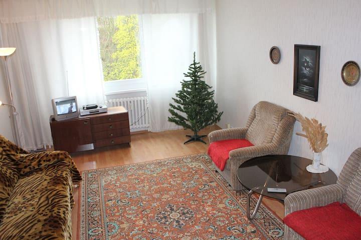 Apartments 3+kk in spa area. - Teplice - Departamento