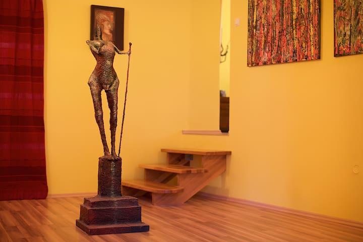 Brian O'Connell - Ptuj - Apartamento