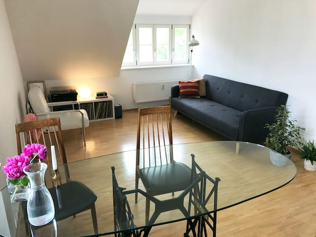 Cheerful apartment in central Tübingen - Tübingen - Apartament
