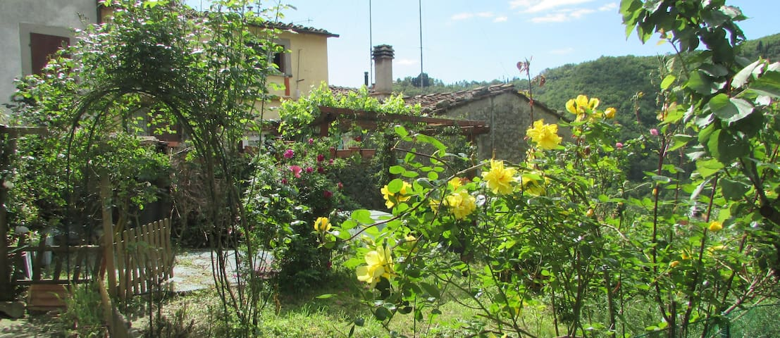In the green of Tuscany - Tosi - Hus