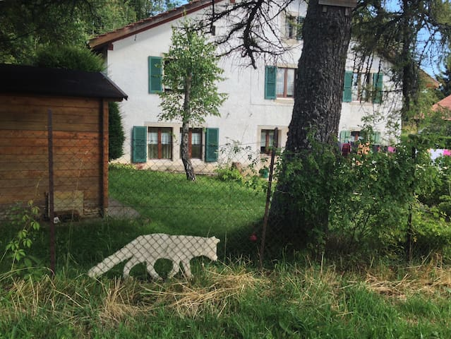 Chez Rosmarie - Saint-Brais - 家庭式旅館