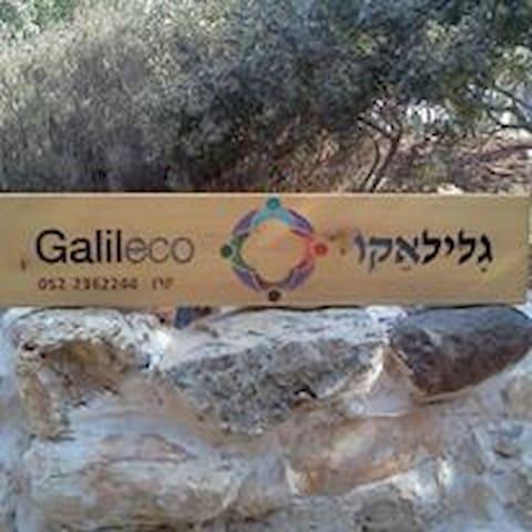 Galileco - Hararit - Daire