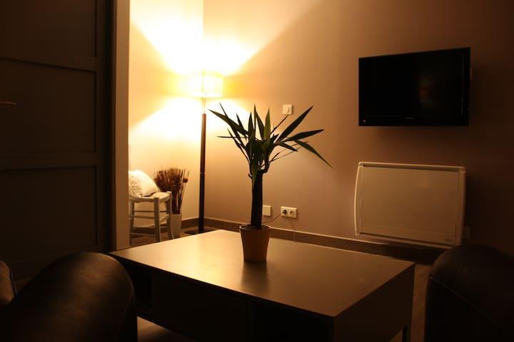 nest, 1 bedroom, quiet, access to the Jacuzzi. - Aussonne - Apartemen