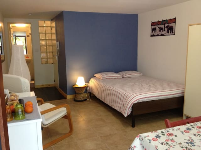 Little studio in nice neighborhood - Woluwe-Saint-Pierre - Lägenhet
