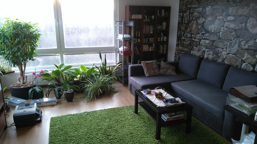 NEW Sunny 2BD apt. near Bory Mall and forest - Bratislava - Daire